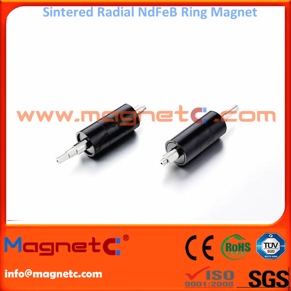 32 Poles Radially Oriented Sintered Ring Magnet
