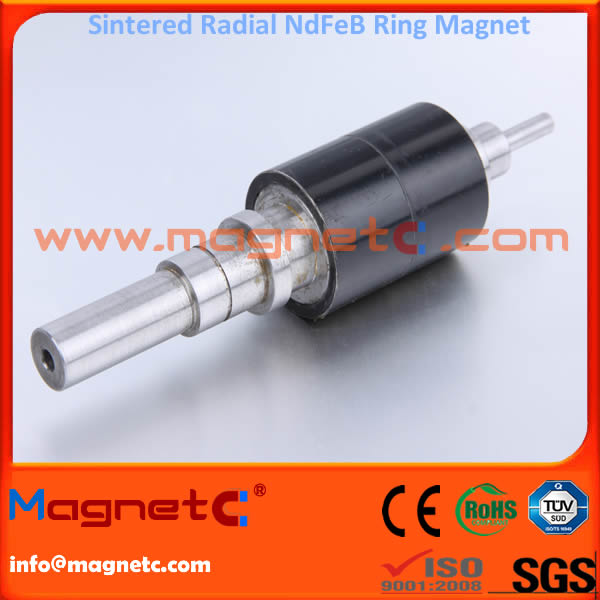 Radiation Ring NdFeB Rotor Magnet