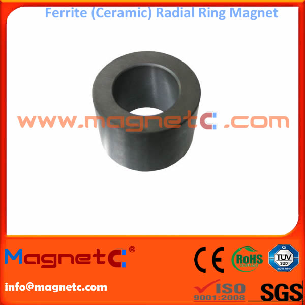 Ferrite Magnetic Rings Radial