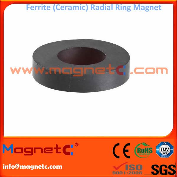 Radial Magnetization Ferrite Ring Magnet
