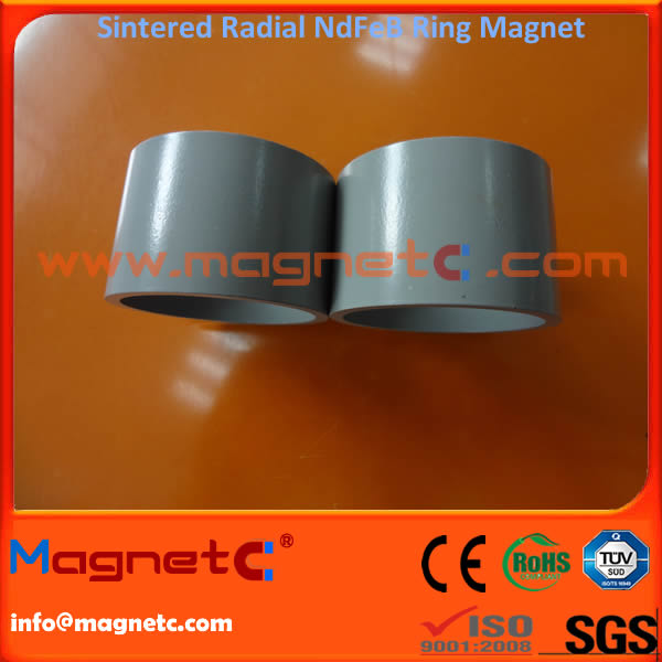 Uni-Pole Radial Aligned Ring Magnet