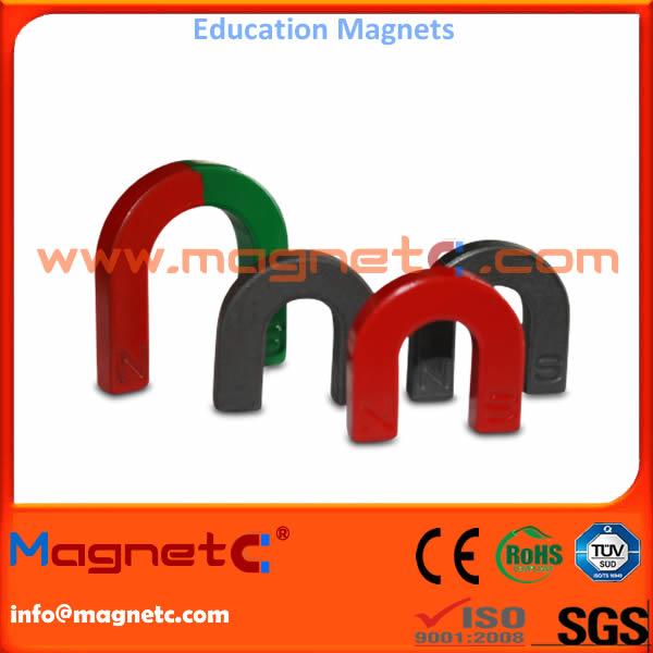 Painted Educational Magnet Horseshoe