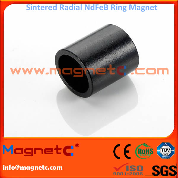 Black Epoxy Coating Radial Ring Magnet