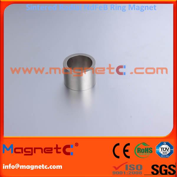 Sintered Neodymium Iron Boron Rings