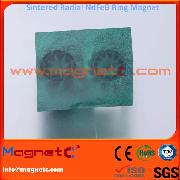 Multi-Pole Radial Ring Neodymium-Iron-Boron Magnet
