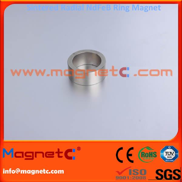 Radial Ring Magnet For Rotor or Servo Motor