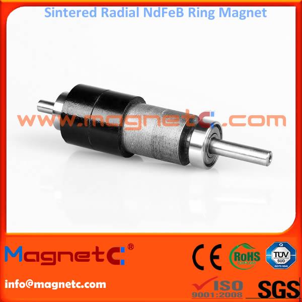 Radially-Aligned Sintered Neodymium Iron Boron Magnet