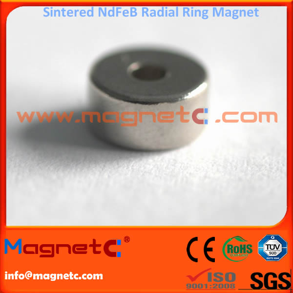 16poles Magnetized Ring Magnets