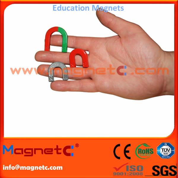 U Shape Educational Magnet