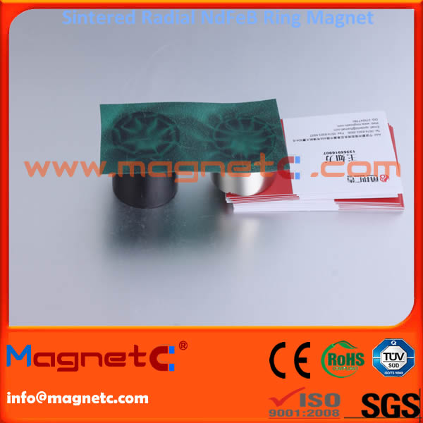Radiation Oriented Ring Permanent Magnets