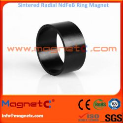 Sintered Neodymium Radial Oriented Ring Black Epoxy Coating
