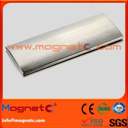 Segment Rare Earth Magnet