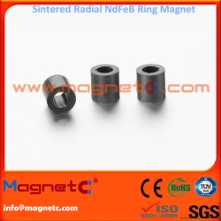 Radially Oriented Sintered NdFeB Rings