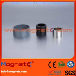 Radial Ring Sintered NdFeB Permanent Magnets