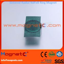 Sintered NdFeB Ring with Radial Orientation Epoxy