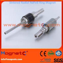 Neodynium Radial Ring Magnet for Rotor