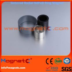Skewed Pole Pattern Radial Ring Magnet