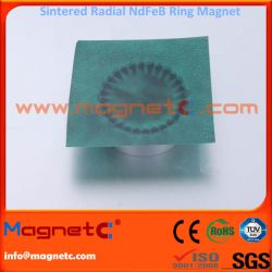 Radiation Ring Sintered Permanent Magnets