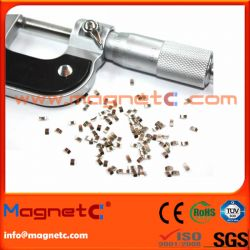 Electric Motor NdFeB Precision Magnet