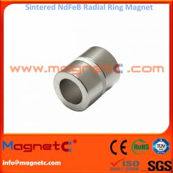Multipole Magnetized Ring Magnet
