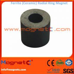 Sintered Ferrite Ring Magnet