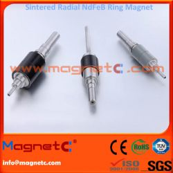 Permanent Radial Magnetized Ring Magnets