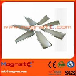 Twisted Arc Magnet