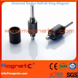 8 Poles Radial Ring Neodymium Magnet