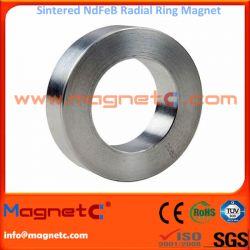 Radial Ring Magnet for Power Steering Motors