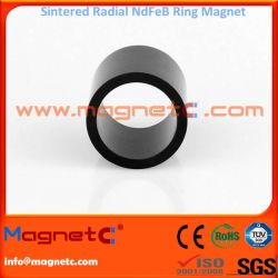 Skewed Pole Radially Oriented Ring Magnet