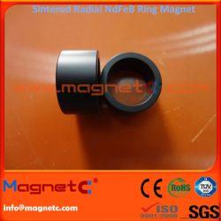 Sintered NdFeB Magnetic Radially Aligned Ring