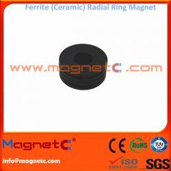 Ferrite Radial Ring Magnet