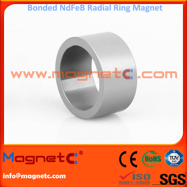 Multipole Radial Ring Magnet