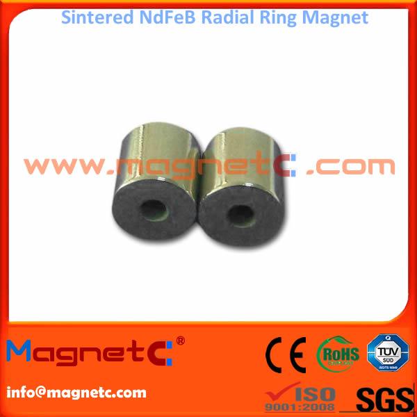 Industrial Radiation Circle / Ring Magnet