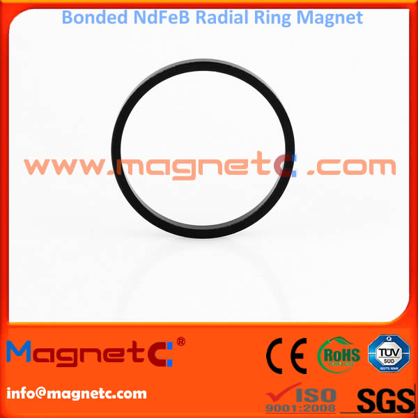Radial Ring Bonded NdFeB Magnets (Injection Molded)