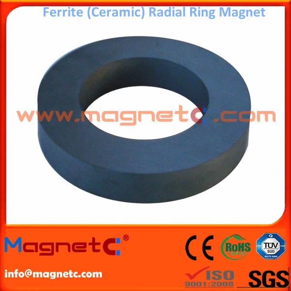 Radial Hard Ferrite Ring Magnet