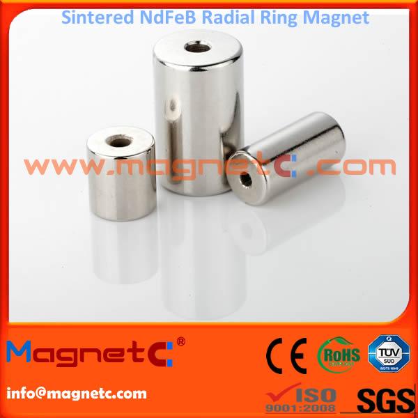 Multi-pole Magnetization Ring Magnet