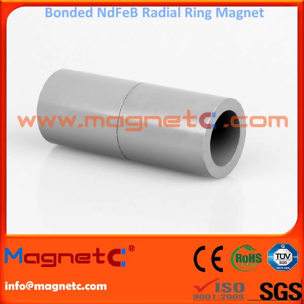 Ring Shape Bonded NdFeB Magnet