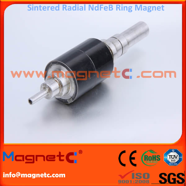 Neodynium Radial Ring Magnet for Rotor N42H